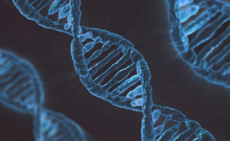 Mutações Genéticas e o Câncer