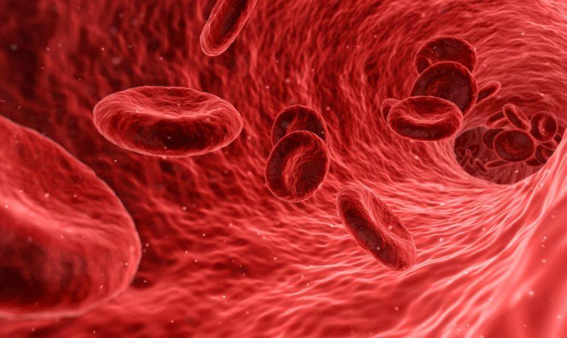 Exame de sangue que detecta câncer pode ser uma realidade