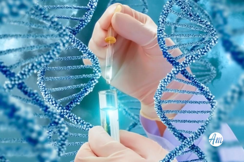 Os testes genéticos ajudam a compreender os riscos do câncer de mama